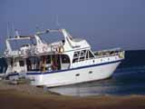 images/photos/1993_Red_Sea/Red_Sea_1993-01.jpg