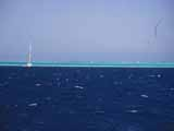 images/photos/1993_Red_Sea/Red_Sea_1993-16.jpg